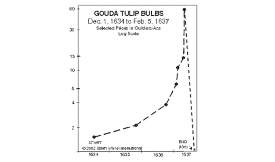 Bitcoin Tulp