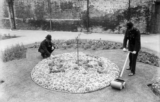 Two policemen tending garden