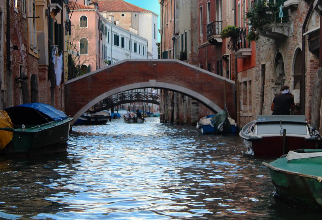 Venice-8b