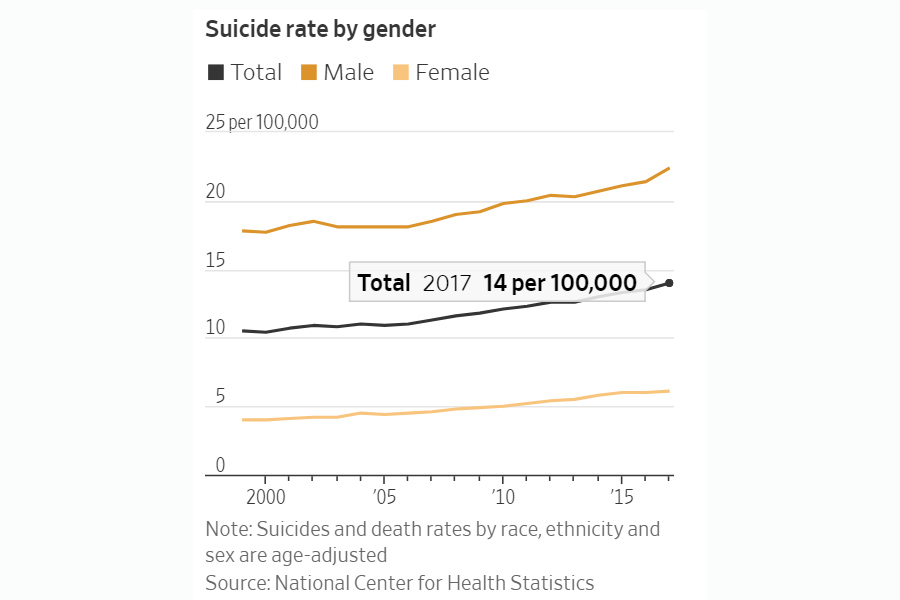 Suicide-US