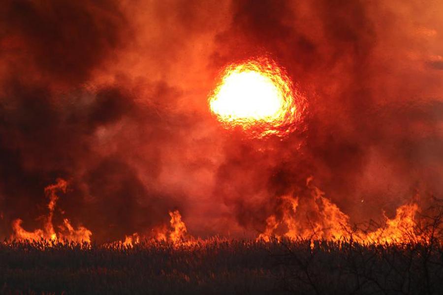 Crimea-Flame