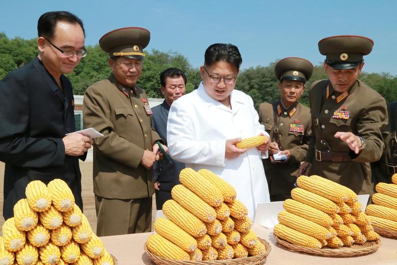 Kim-Corn