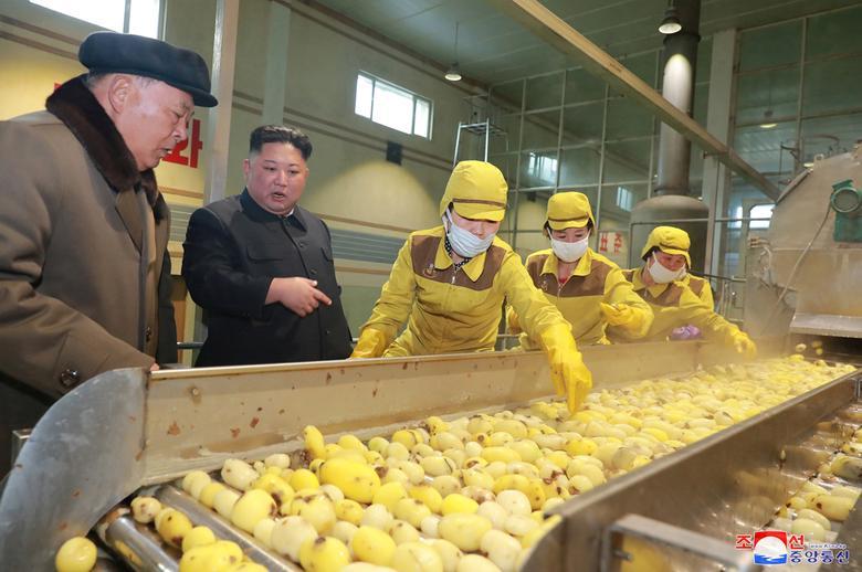 Kim-Potato