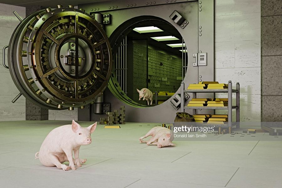 Safe-Pigs