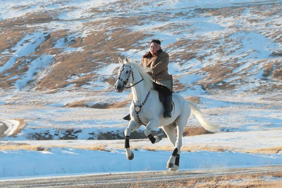 Kim-Horse