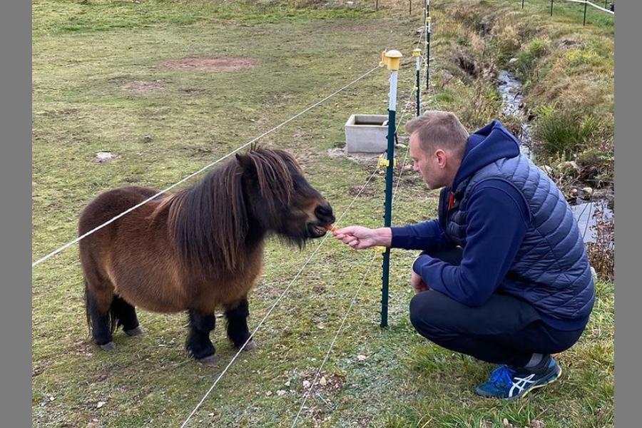 Pony-Nav