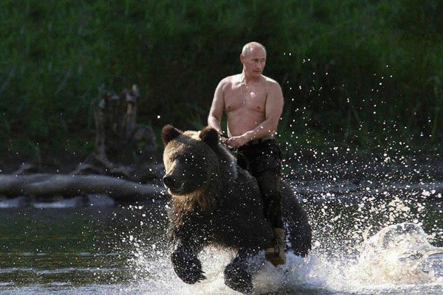 On-Bear