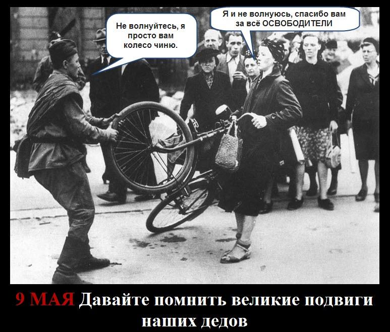никонов жж: