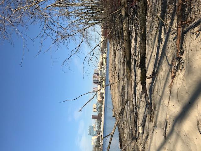 Химкинское водохранилище, март 2020 года