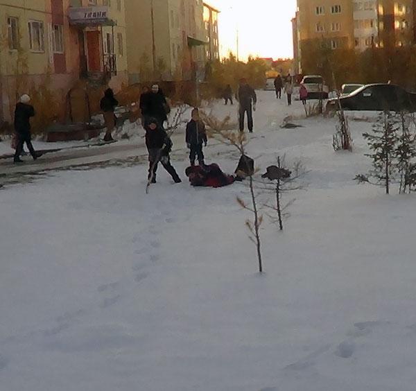 радость-зимы