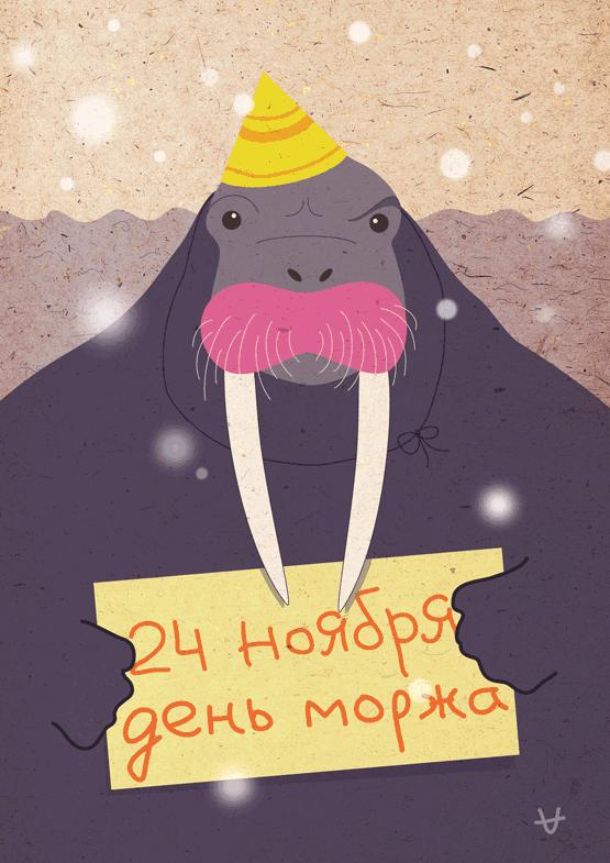 Мои поздравления моржу
