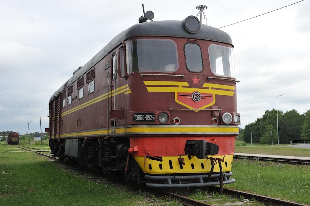 DSC_5950