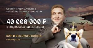 navalnij_rasskazal_o_samolete_shuvalova_dlya_perevozki_sobak_za_50_mln_2
