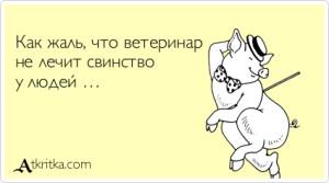 atkritka_1416383944_591