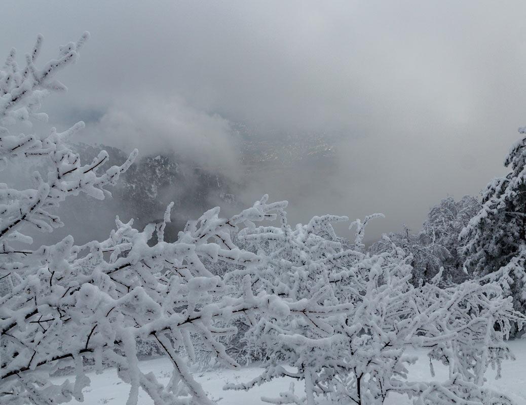 IMG_2946-Panorama