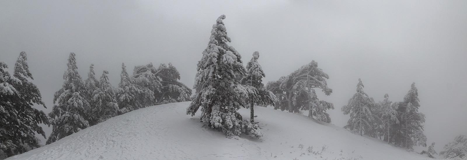 IMG_3037-Panorama
