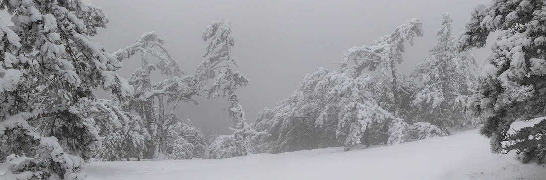 IMG_3059-Panorama
