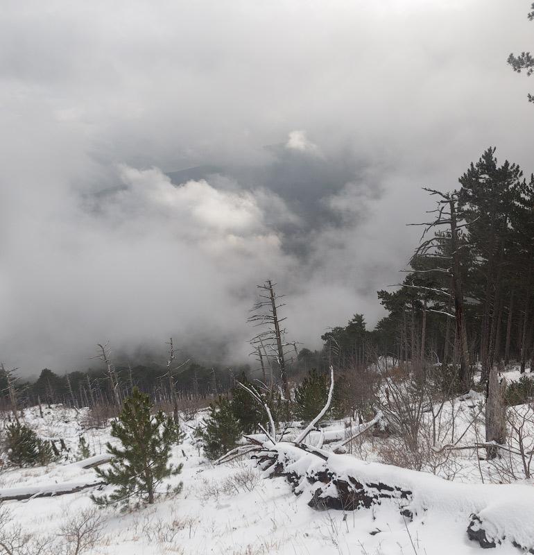 IMG_3086-Panorama