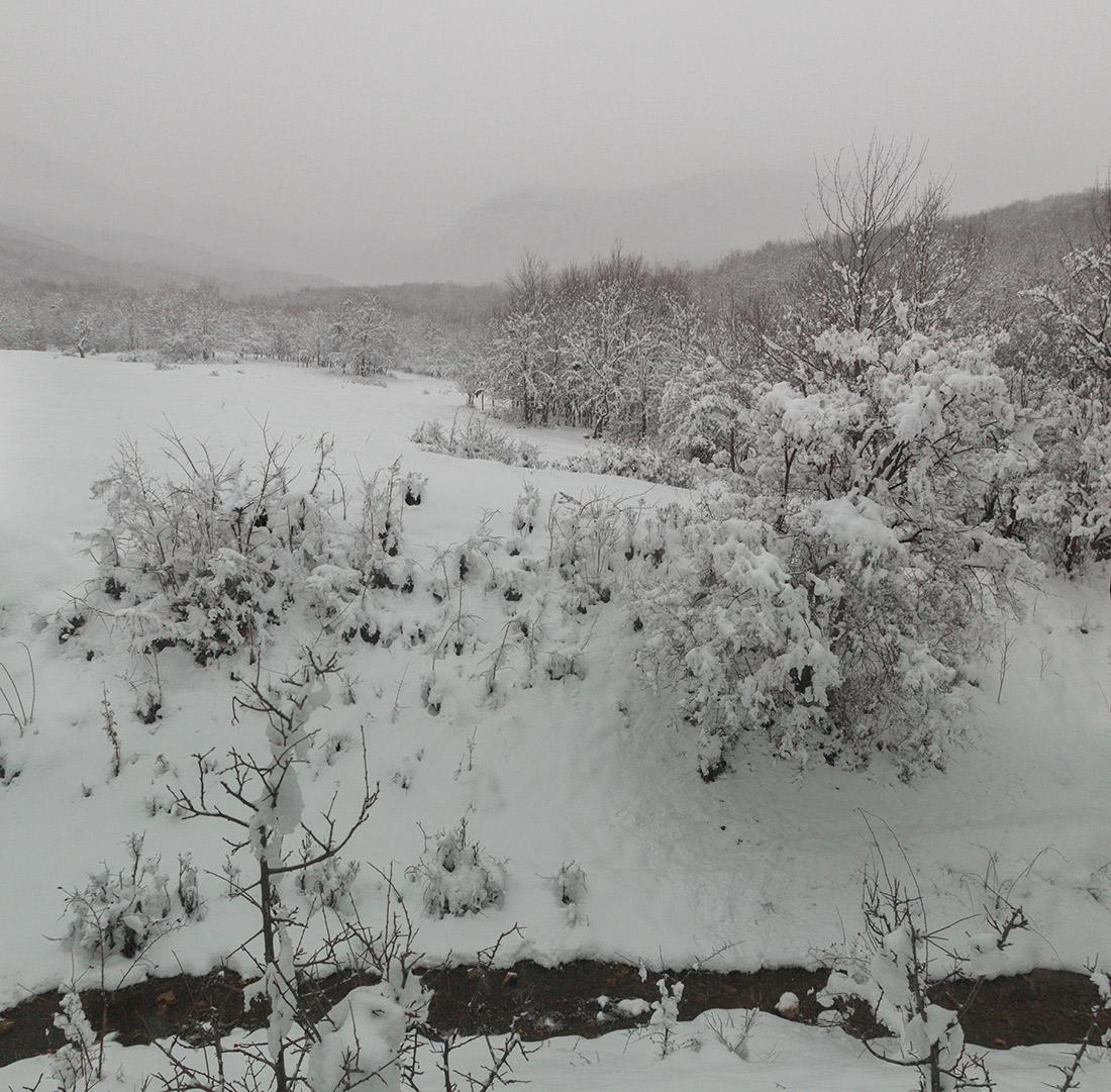 IMG_3325-Panorama