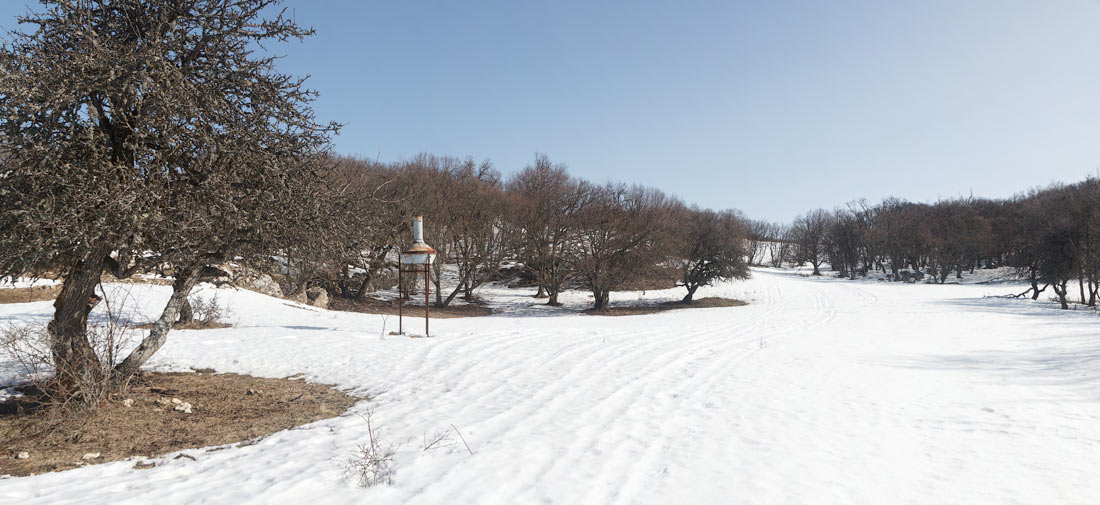IMG_4924-Panorama