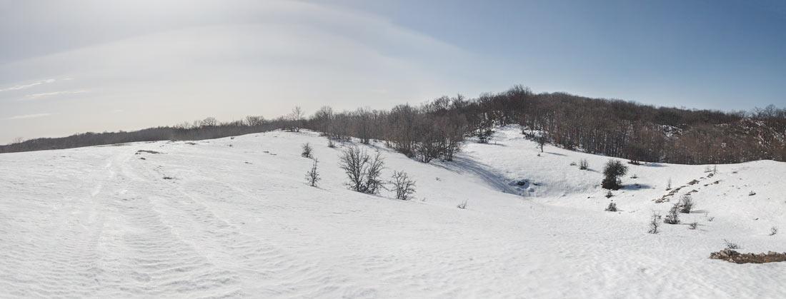 IMG_4958-Panorama