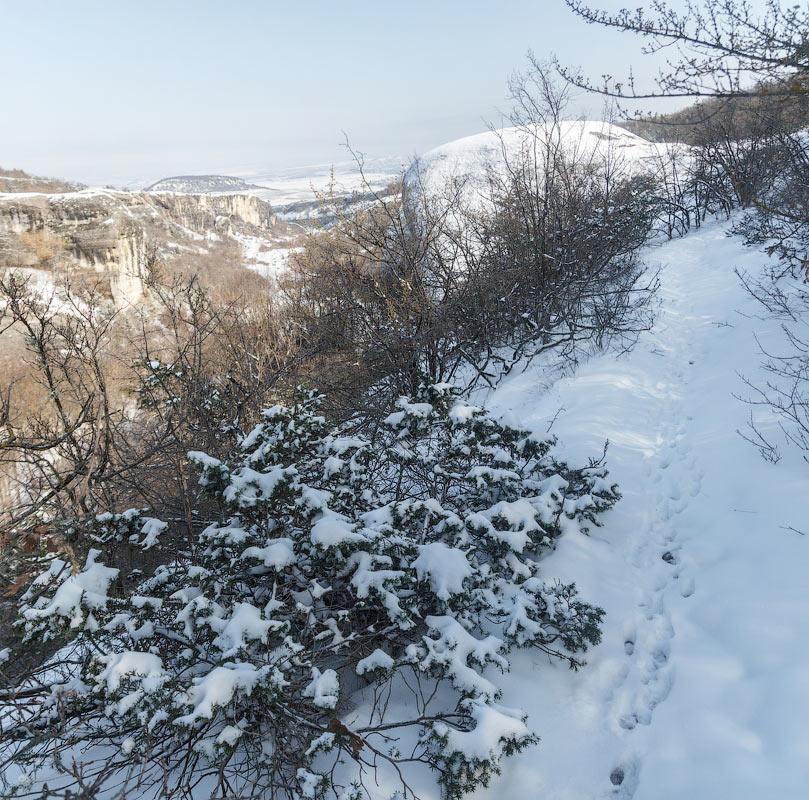 IMG_5716-Panorama