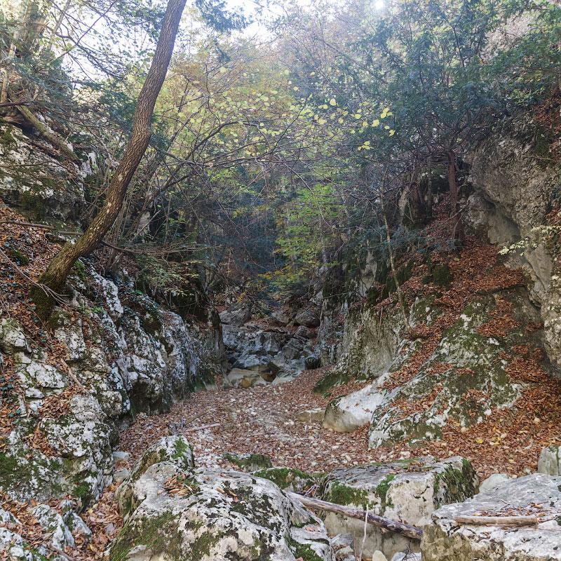 IMG_6371-Panorama