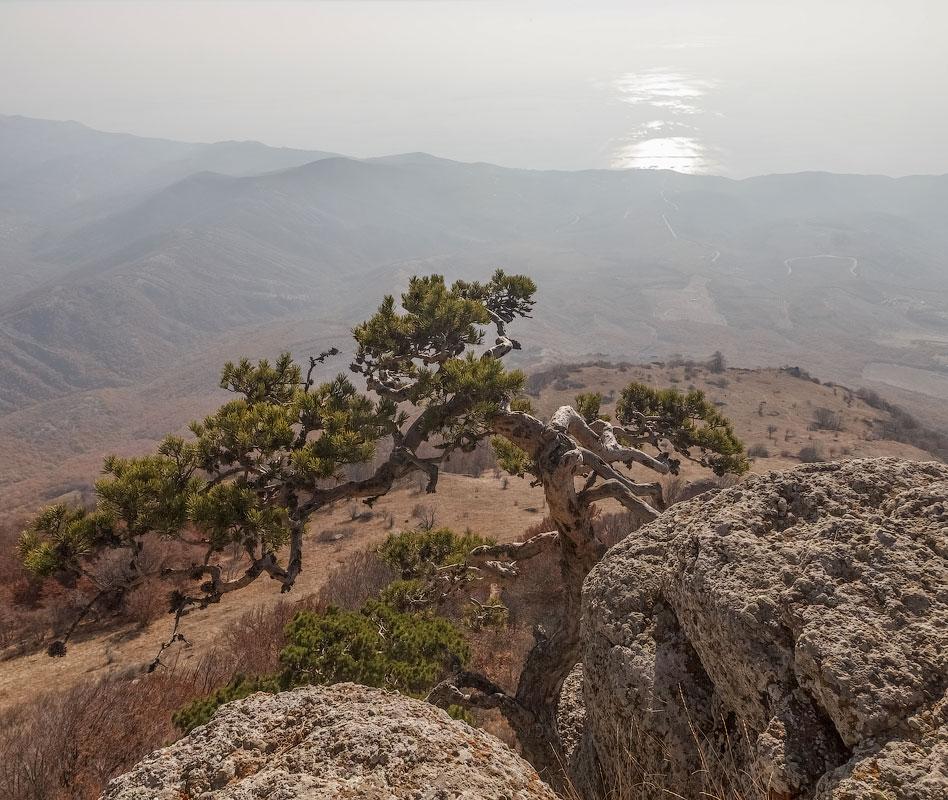IMG_8201-Panorama
