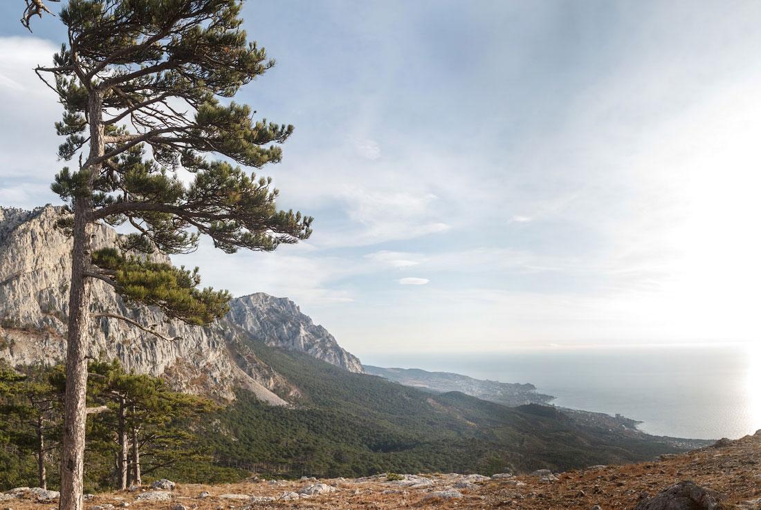 IMG_9085-Panorama