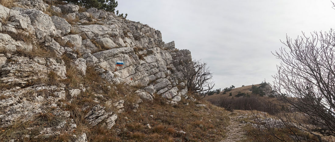 IMG_9205-Panorama