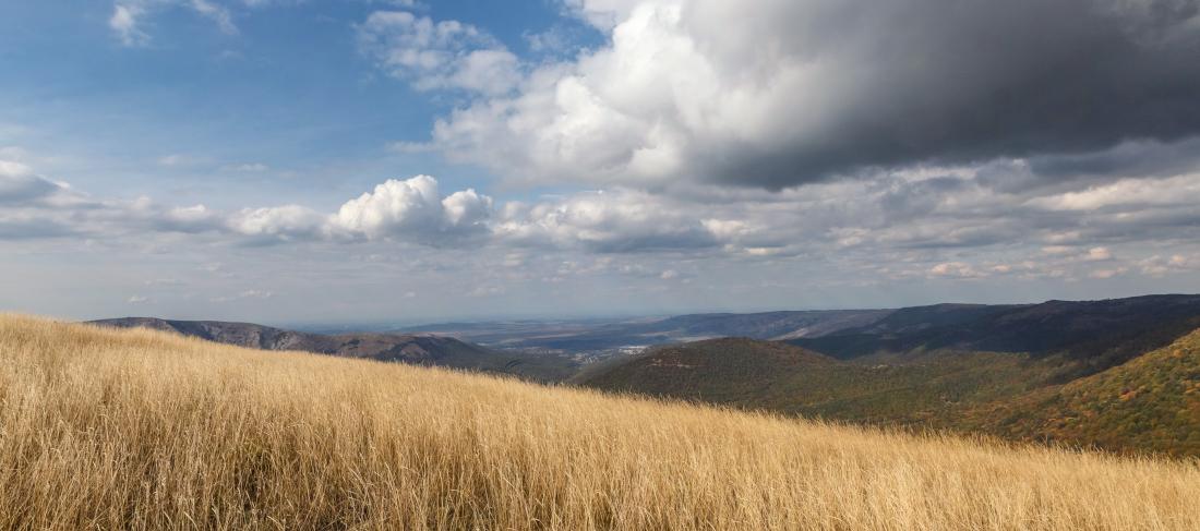 IMG_2224 Panorama