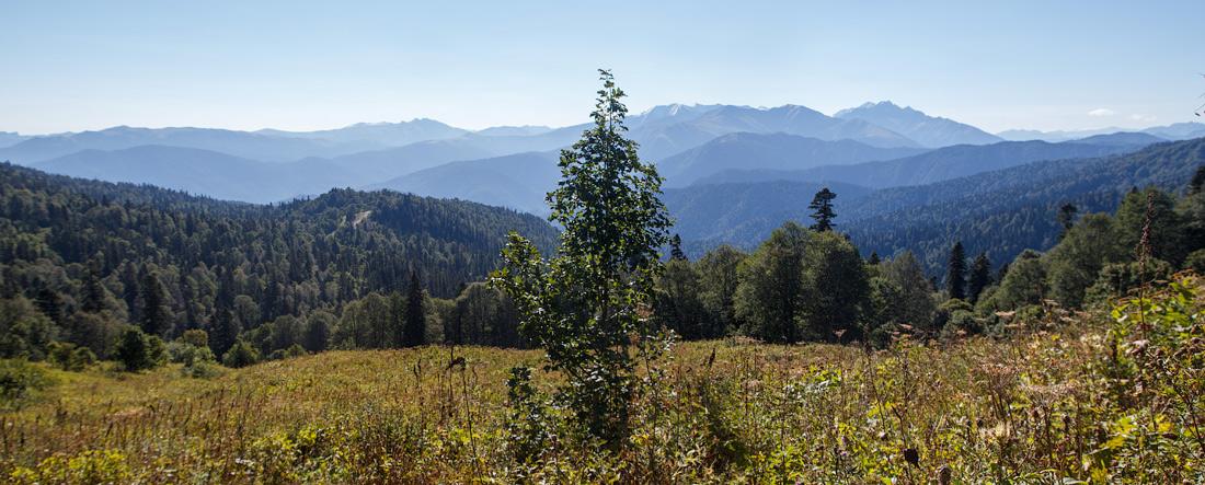 IMG_3300-Panorama