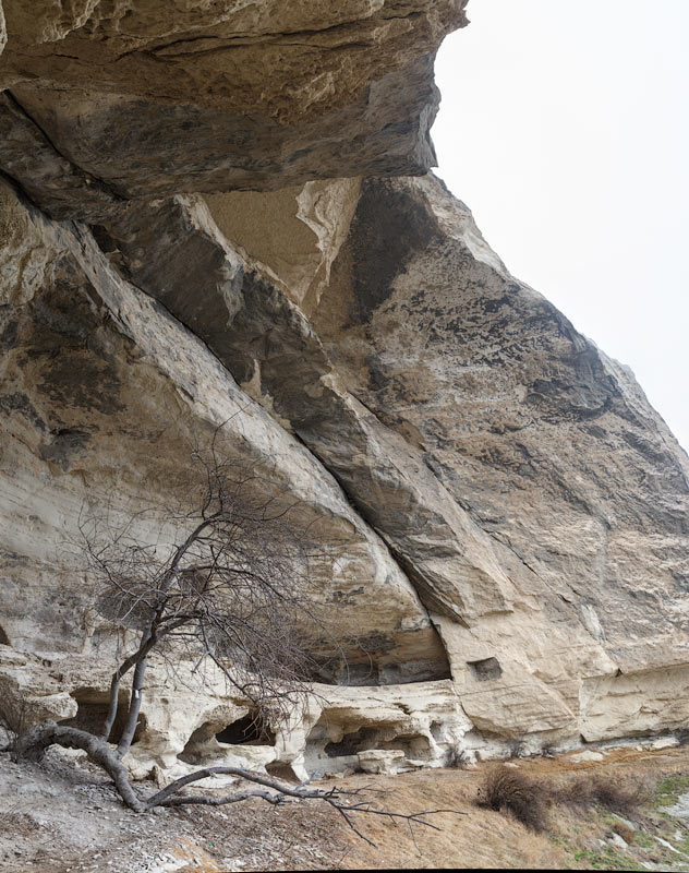 IMG_7794-Panorama