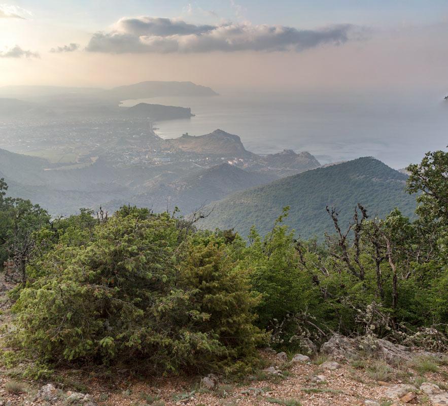 IMG_9984-Panorama