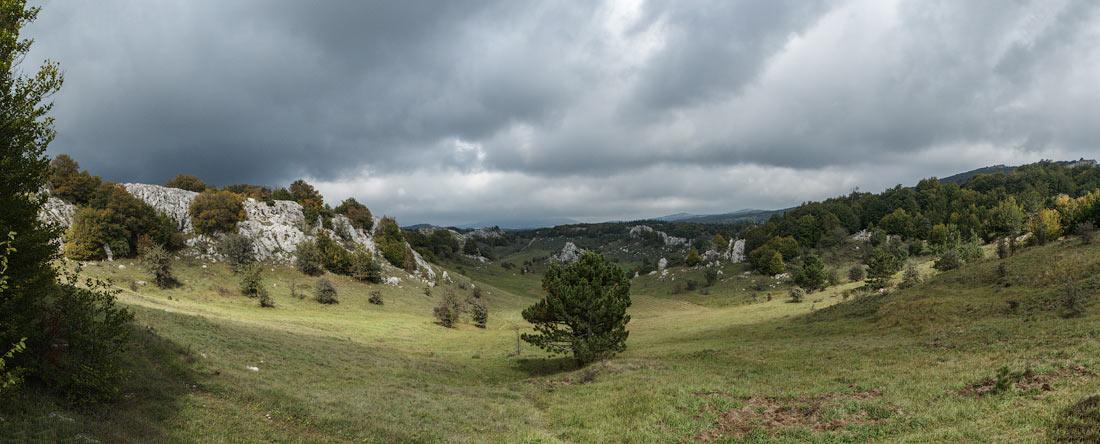 IMG_6420-1_Panorama