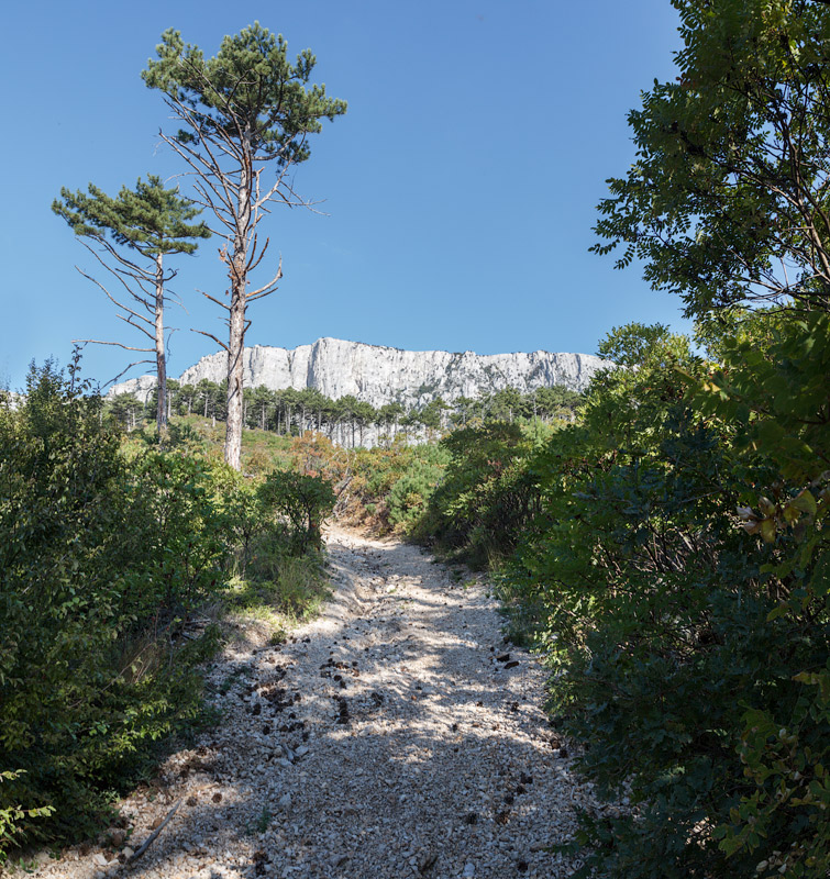 IMG_7235-Panorama