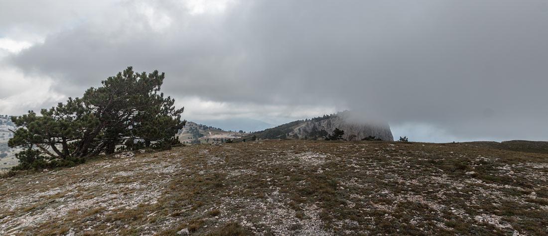 IMG_7541-Panorama