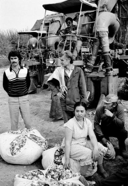 3 Крис Стил-Перкинс. За Ташкентом, 1988. Хлопкоуборочный колхоз