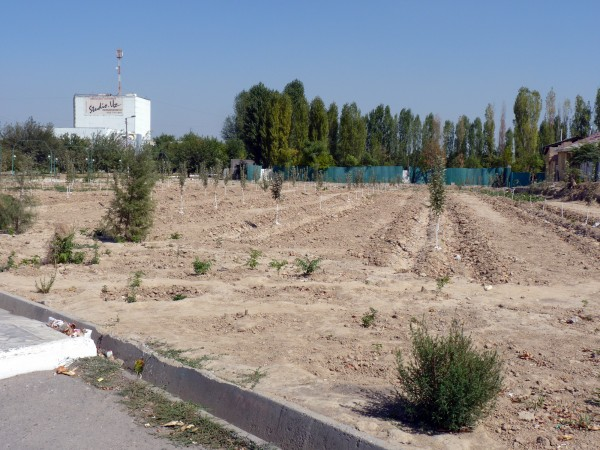 7. Зеленая зона на месте снесенного рынка Ташсельмаш, 2011 год