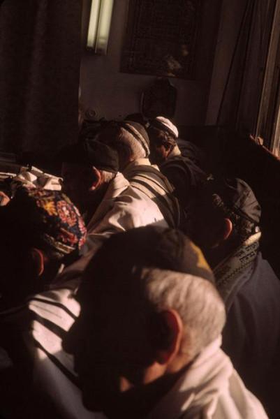 81 Пинхасов, Ташкент, 2001 евреи