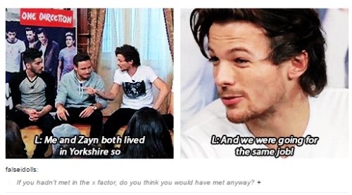 Tumblr - Zouis going for same job