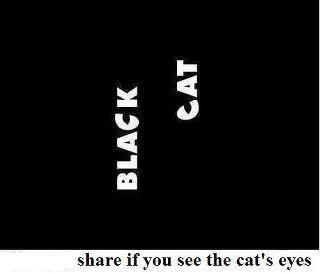 кошачьи глаза в тексте
