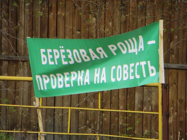 Митинг в защиту Березовой рощи в Красноярске в мае 2014 г. Фото: Александр Колотов