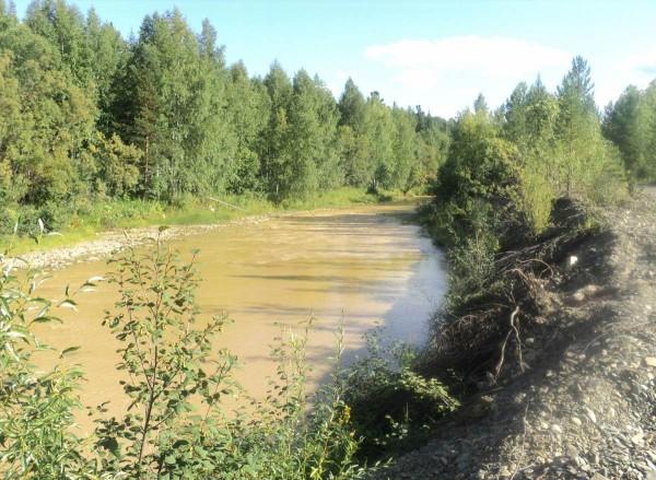 Река Большая Мурожная. Фото представлено КРОЭО «Плотина»