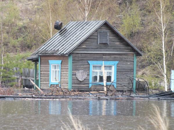 В зоне затопления Богучанской ГЭС. Фото: Евгений Болмасов