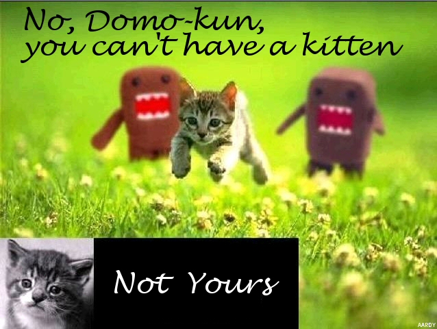 Domo-kun can't have a kitten