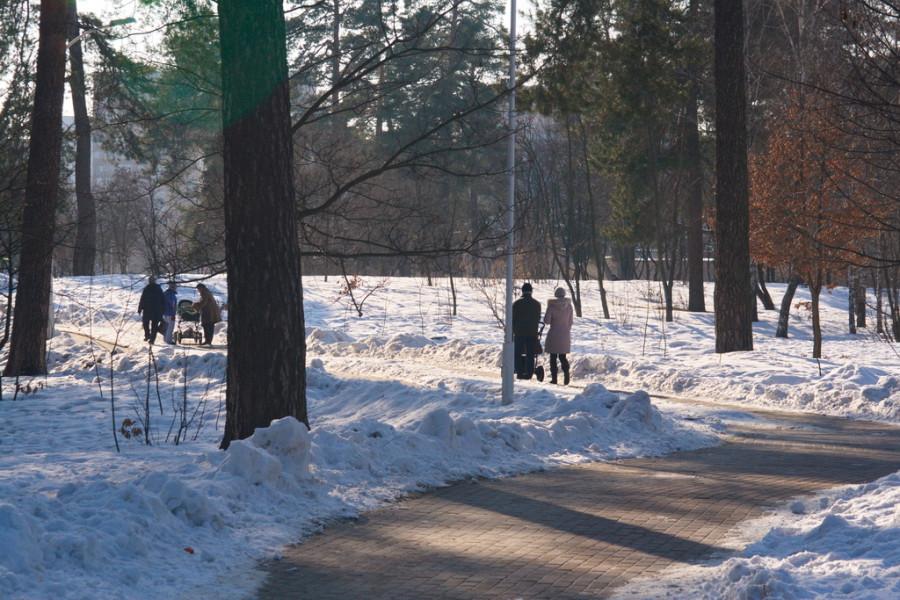 весна, снег Киев, фото