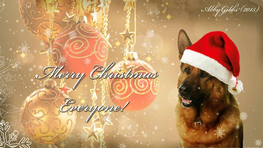Rex Christmas 2015.jpg