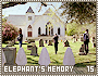 criminalminds-elephantsmemory15