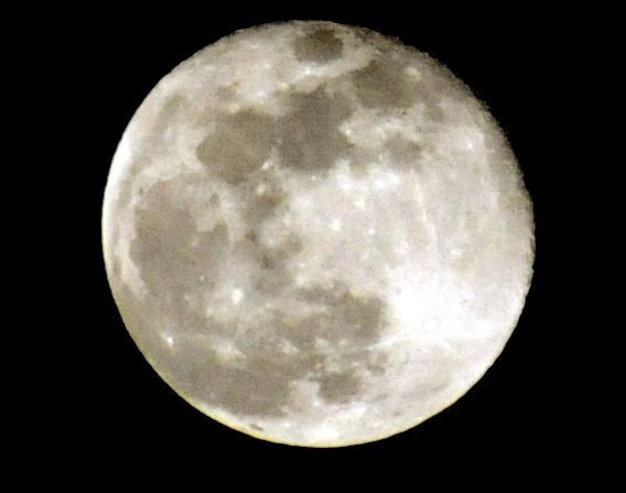 moon d300  F220